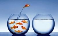 Способы самомотивации - 10 простых секретов серьёзных достижений