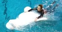 Чего не любят дельфины и белухи