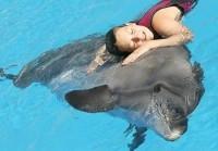 Почему эффективна дельфинотерапия