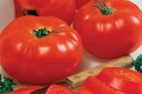 Салат из свити и помидора