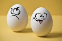 Смешные куриные яйца