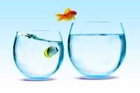 Как избавиться от страха перемен