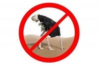 Не прячьте голову в песок