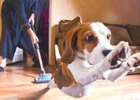 Уборка в доме и настроение