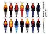 Карта эмоций и активных участков на теле человека
