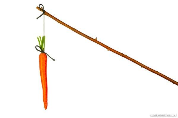 удочка с морковкой