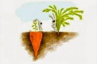 Рассказ: Олимпийская морковь